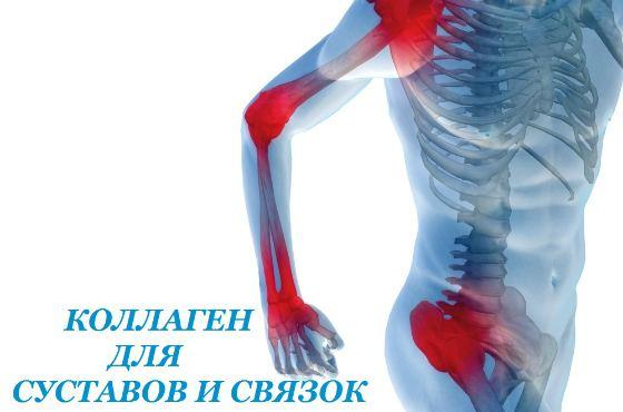 Collagen для суставов и связок