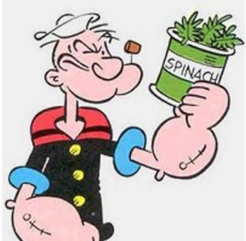 Кейл против шпината что полезнее?