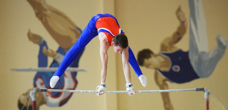 Спортивная гимнастика: присвоение спортивных разрядов и званий