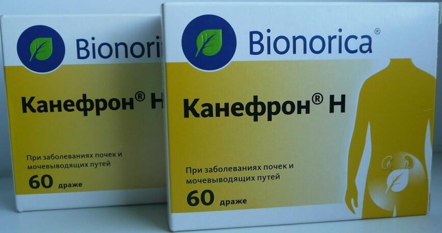 Канефрон для лечения цистита