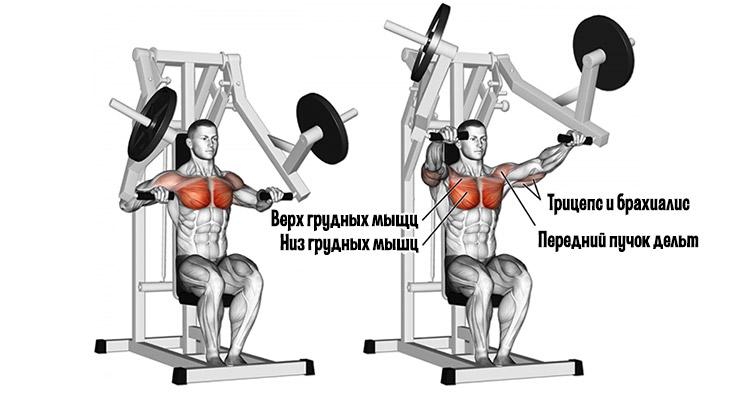 Мышечная активация