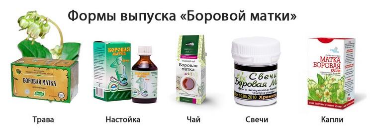 Самые эффективные средства с боровой маткой для лечения миом