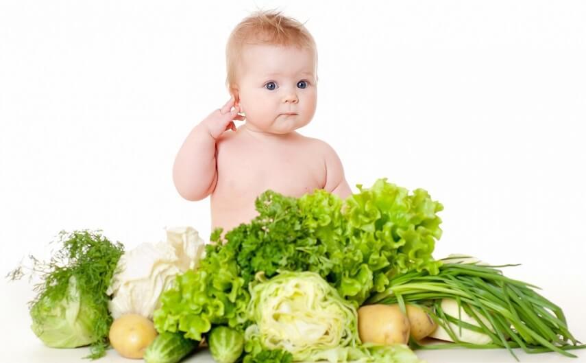 для первого знакомства отдают предпочтение овощам светлы и зеленых тонов
