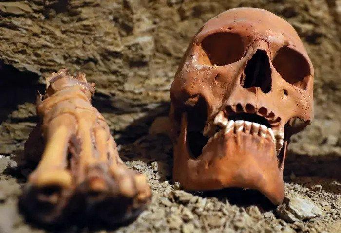 Человеческие кости обнаружены в гробнице Аменамата, недалеко от Луксора, Египет, 9 сентября 2017