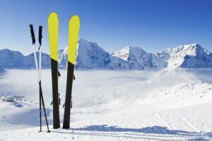 Виды горных лыж