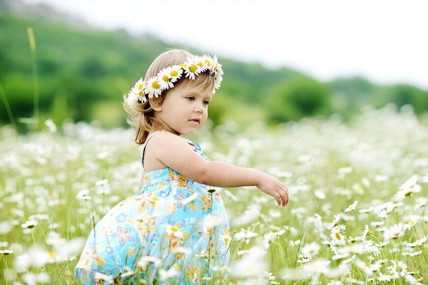 ромашка благотворно влияет на нервную систему ребенка