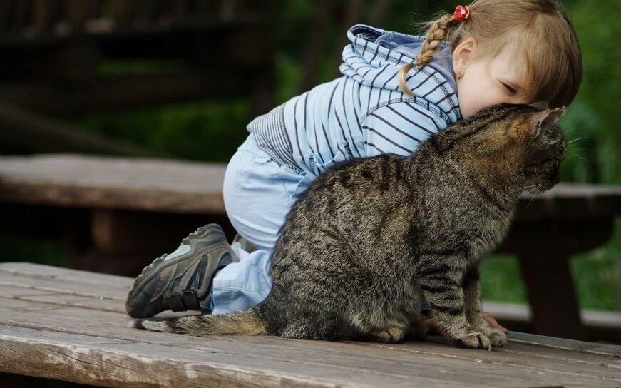 часто дети неразлучны с домашними любимцами