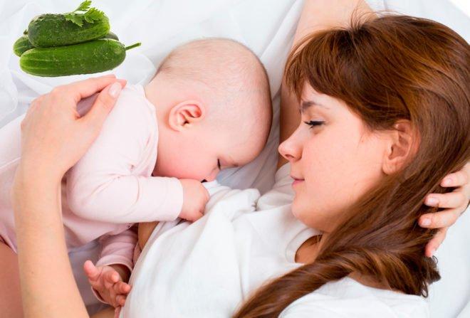 Можно ли кормящей маме есть огурцы: свежие, соленые, маринованные