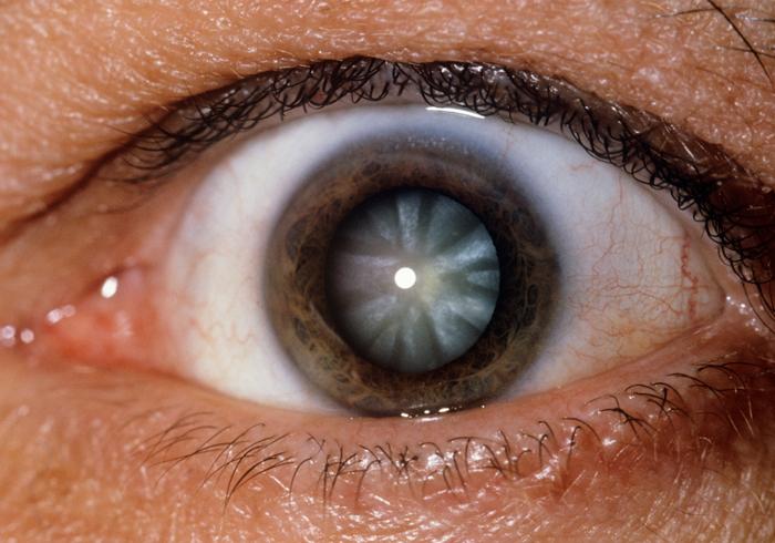 витафакол глазные капли инструкция