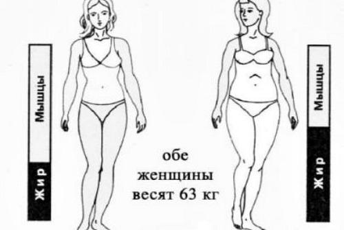 фигура с разным содержанием жира