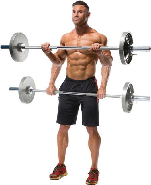 Сгибание рук со штангой обратным хватом Тягу штанги с помощью мышц предплечий необходимо выполнять в умеренном темпе.