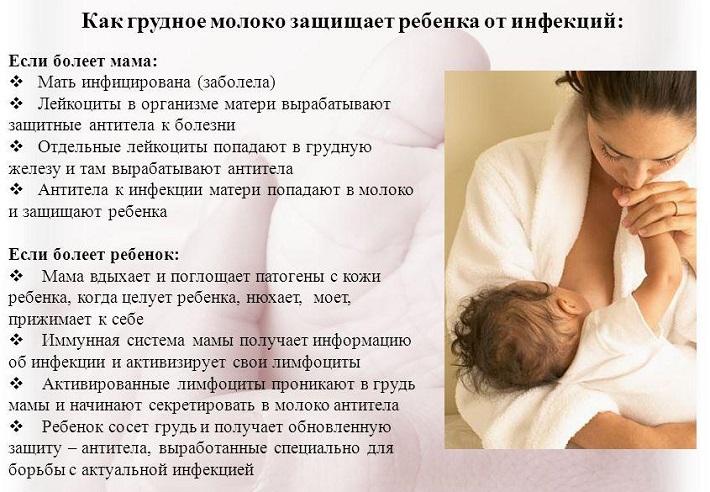 механизм защиты ребенка при грудном вскармливании