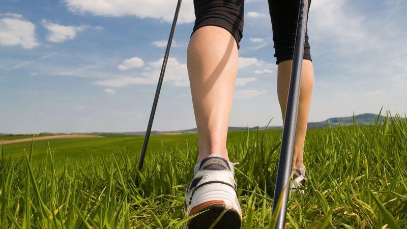Скандинавская ходьба с палками: как правильно заниматься ходьбой, польза и техника выполнения