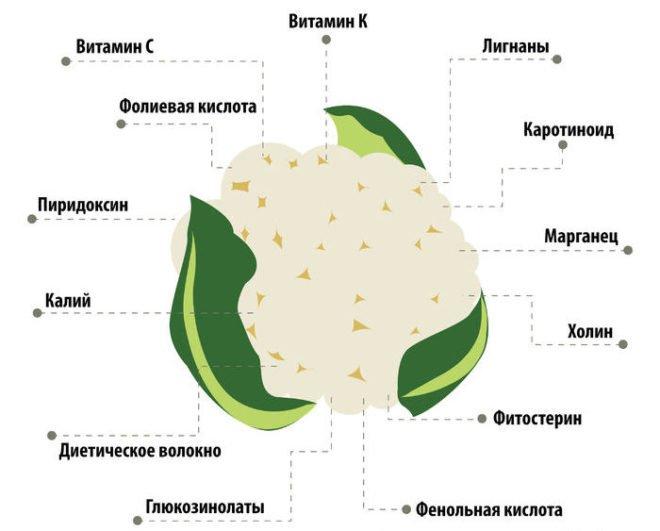 Цветная капуста для первого прикорма грудничка: можно ли, как готовить и вводить
