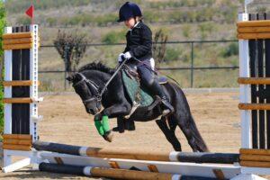 Конный спорт для детей
