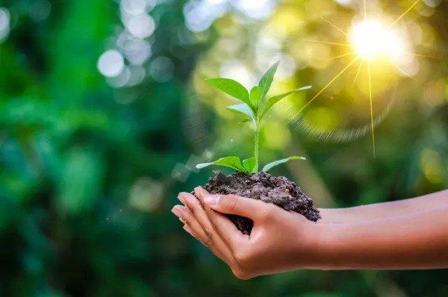 Это продвигает &quot,зеленый&quot, образ жизни